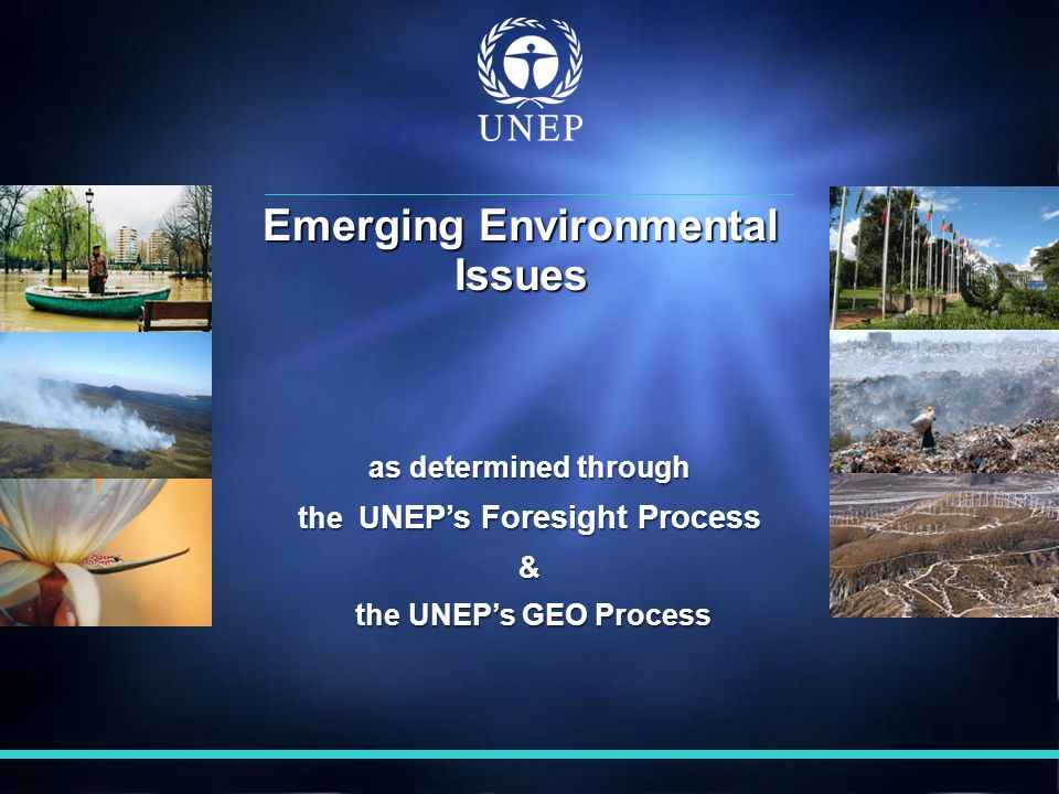 as determined through the U NEP's Foresight Process & the UNEP's GEO Process the UNEP's GEO Process Emerging Environmental Issues