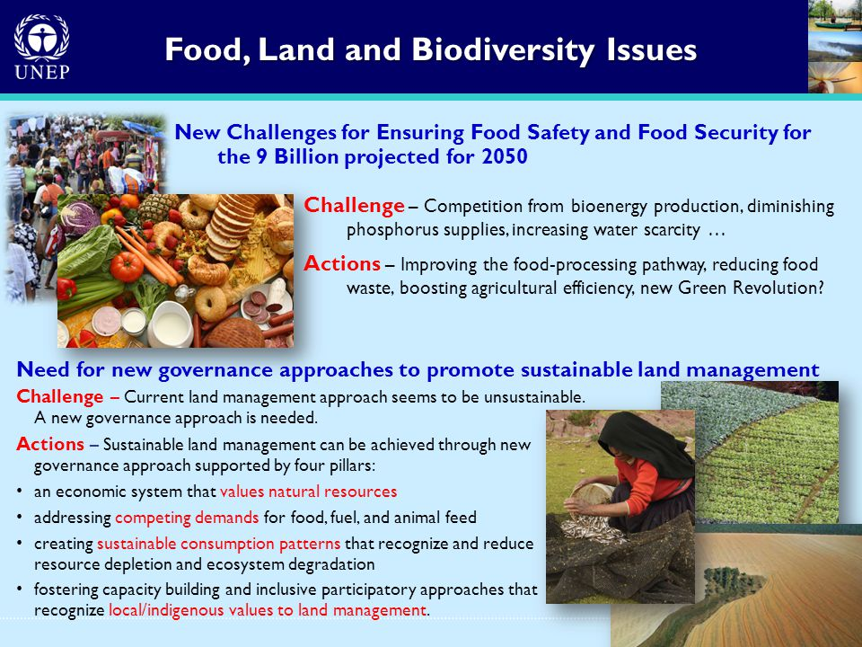 Food, Land and Biodiversity Issues New Challenges for Ensuring Food Safety and Food Security for the 9 Billion projected for 2050 Challenge – Competition from bioenergy production, diminishing phosphorus supplies, increasing water scarcity … Actions – Improving the food-processing pathway, reducing food waste, boosting agricultural efficiency, new Green Revolution.