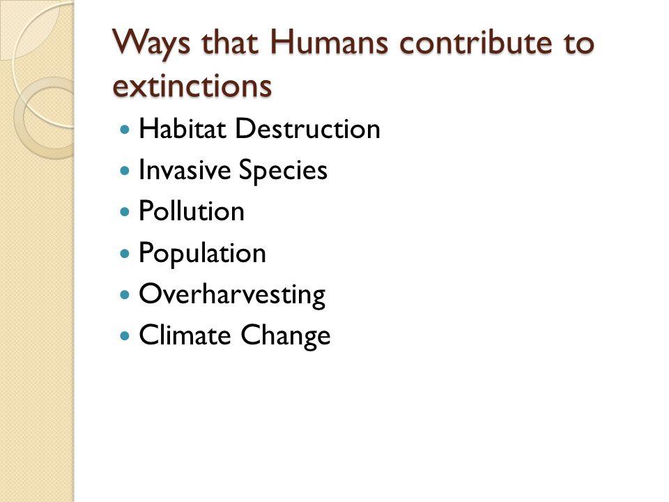 Ways that Humans contribute to extinctions Habitat Destruction Invasive Species Pollution Population Overharvesting Climate Change