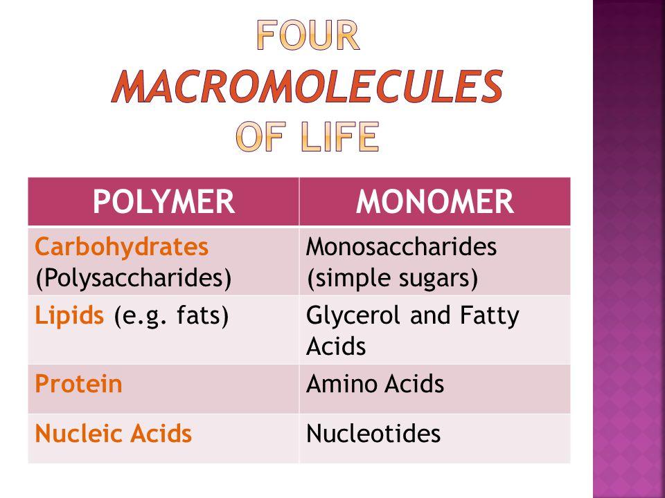 POLYMERMONOMER Carbohydrates (Polysaccharides) Monosaccharides (simple sugars) Lipids (e.g.