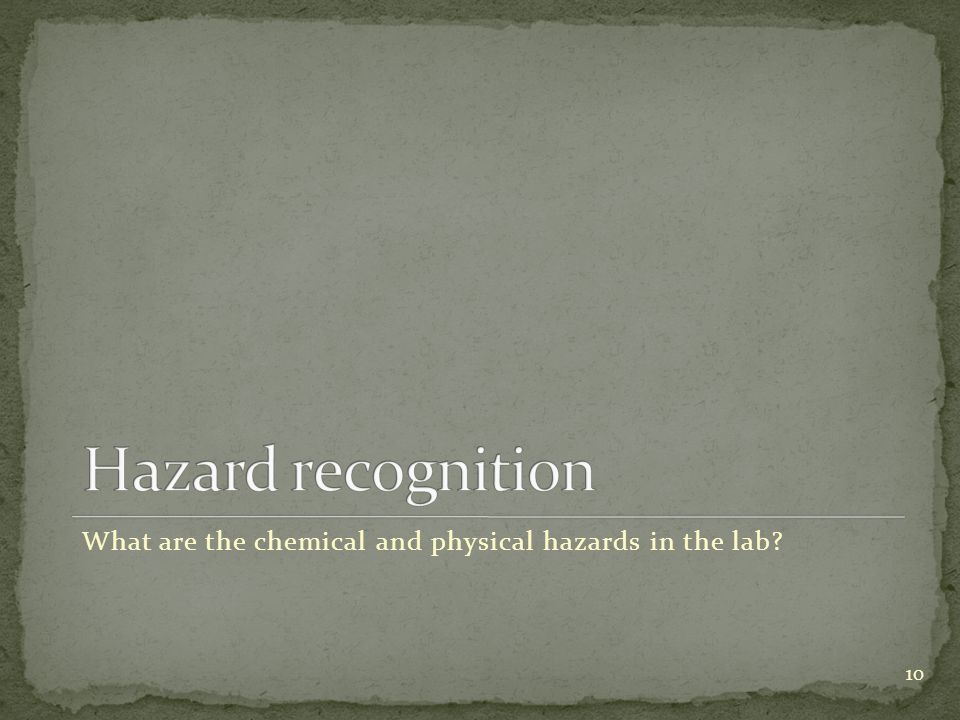 10 What are the chemical and physical hazards in the lab?