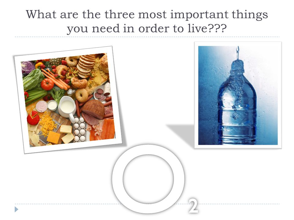 What are the three most important things you need in order to live