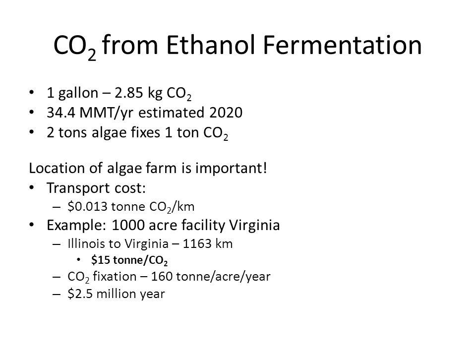 CO 2 from Ethanol Fermentation 1 gallon – 2.85 kg CO 2 34.4 MMT/yr estimated 2020 2 tons algae fixes 1 ton CO 2 Location of algae farm is important.