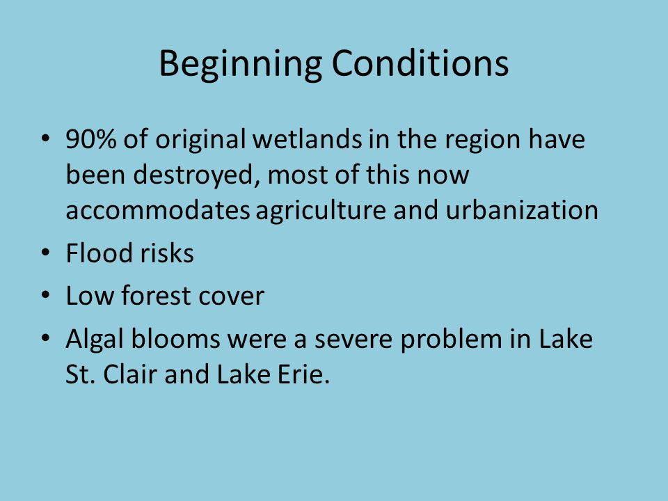 Beginning Conditions 90% of original wetlands in the region have been destroyed, most of this now accommodates agriculture and urbanization Flood risks Low forest cover Algal blooms were a severe problem in Lake St.