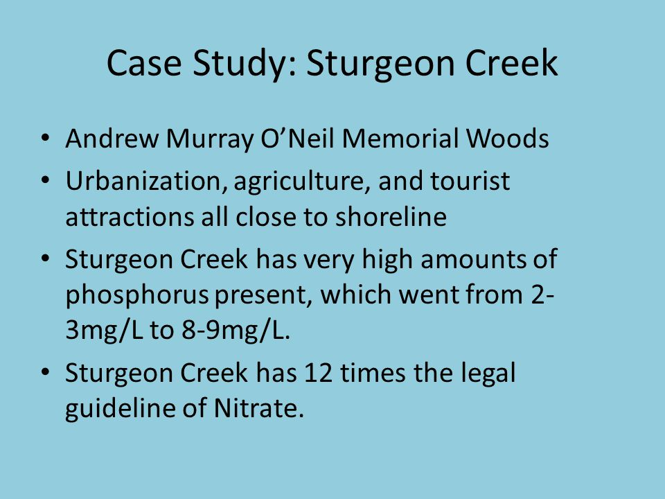 Case Study: Sturgeon Creek Andrew Murray O'Neil Memorial Woods Urbanization, agriculture, and tourist attractions all close to shoreline Sturgeon Creek has very high amounts of phosphorus present, which went from 2- 3mg/L to 8-9mg/L.