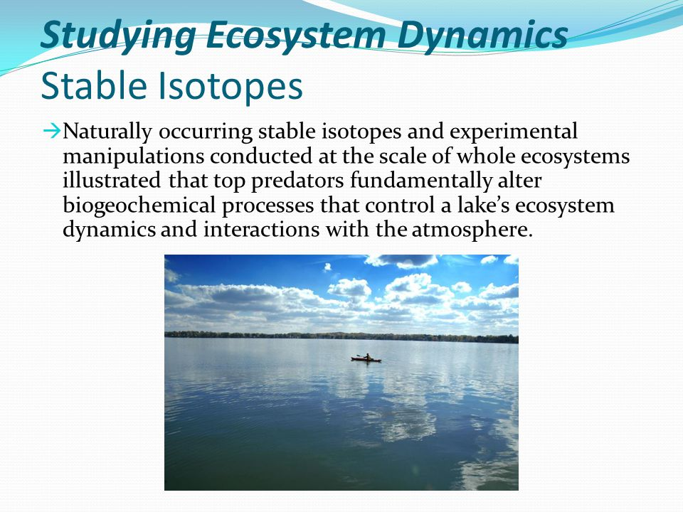 Studying Ecosystem Dynamics Stable Isotopes  Naturally occurring stable isotopes and experimental manipulations conducted at the scale of whole ecosy