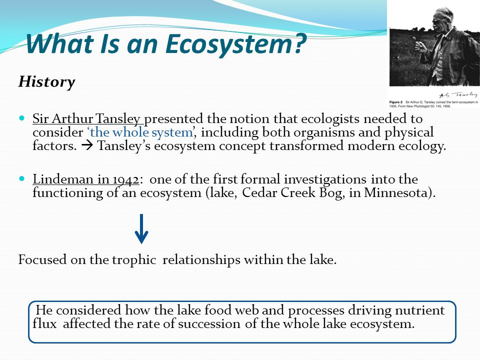 What Is an Ecosystem? History Sir Arthur Tansley presented the notion that ecologists needed to consider 'the whole system', including both organisms