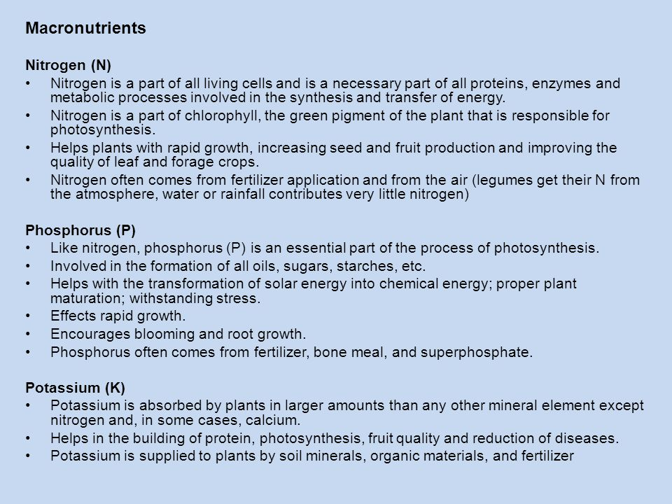 Macronutrients Nitrogen (N) Nitrogen is a part of all living cells and is a necessary part of all proteins, enzymes and metabolic processes involved i