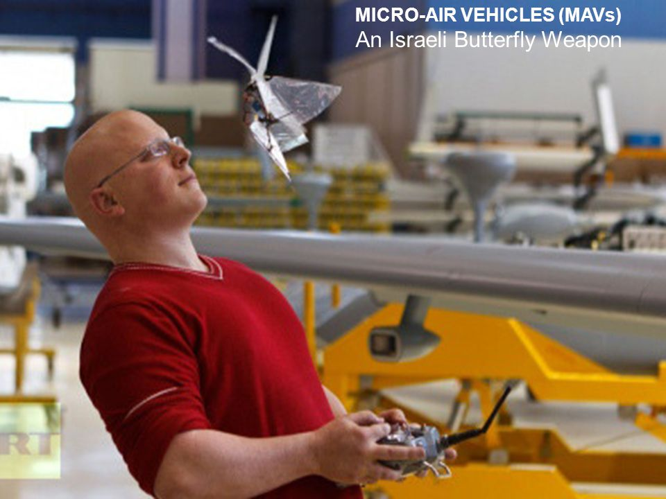 MICRO-AIR VEHICLES (MAVs) An Israeli Butterfly Weapon