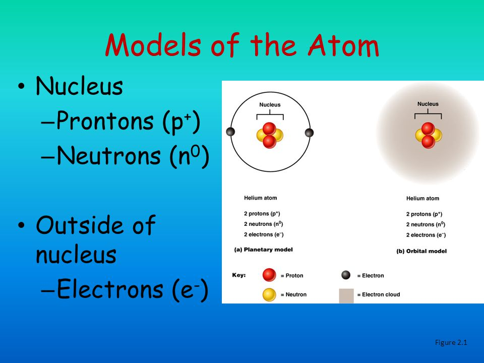 Models of the Atom Nucleus – Prontons (p + ) – Neutrons (n 0 ) Outside of nucleus – Electrons (e - ) Figure 2.1