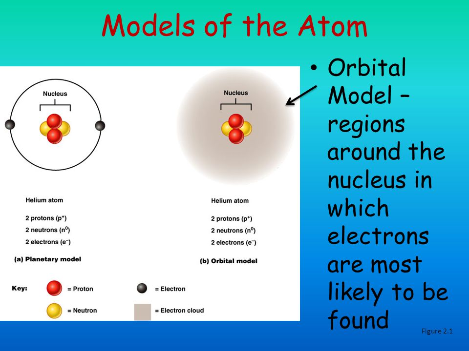 Models of the Atom Orbital Model – regions around the nucleus in which electrons are most likely to be found Figure 2.1