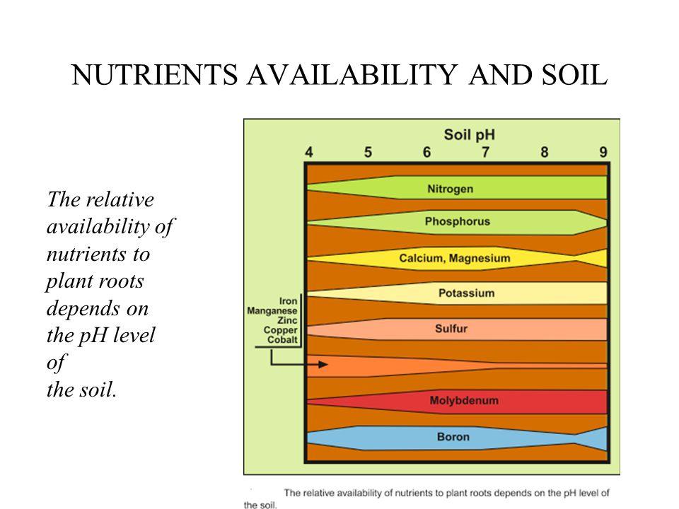 Nitrate and Leaching