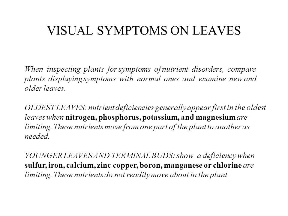 Nutrients Deficiency Symptoms on Leaves The most common symptoms of nutrient deficiency are stunted growth and leaf discoloration.