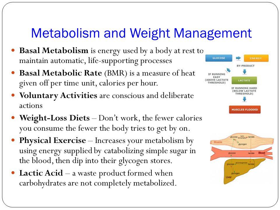 Metabolism and Weight Management Basal Metabolism is energy used by a body at rest to maintain automatic, life-supporting processes Basal Metabolic Ra