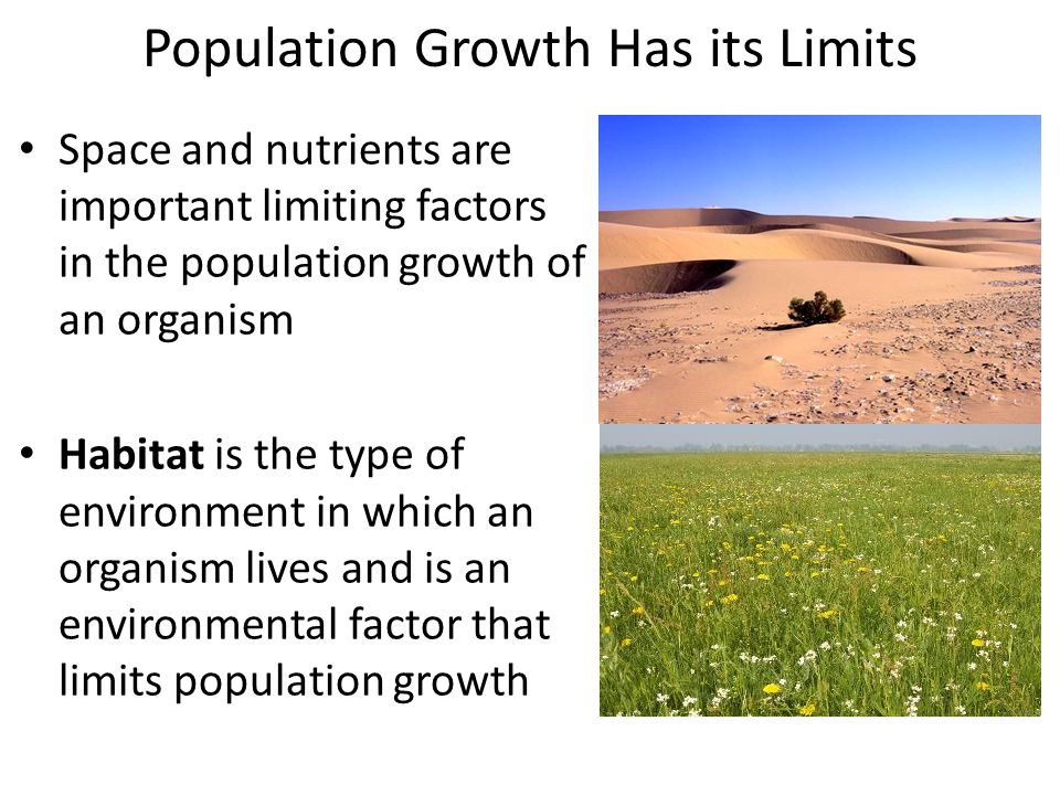 Population Growth Has its Limits Space and nutrients are important limiting factors in the population growth of an organism Habitat is the type of env
