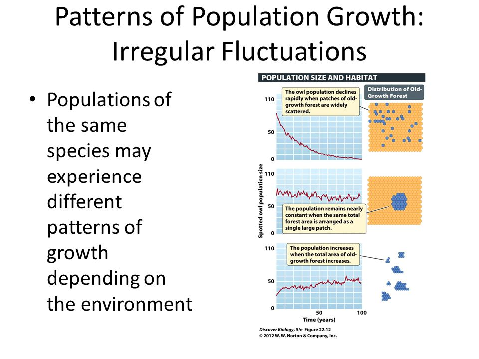 Patterns of Population Growth: Irregular Fluctuations Populations of the same species may experience different patterns of growth depending on the env