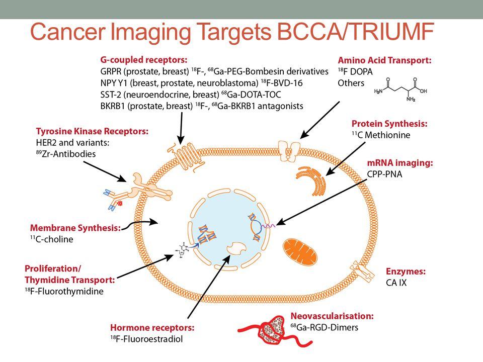 Cancer Imaging Targets BCCA/TRIUMF