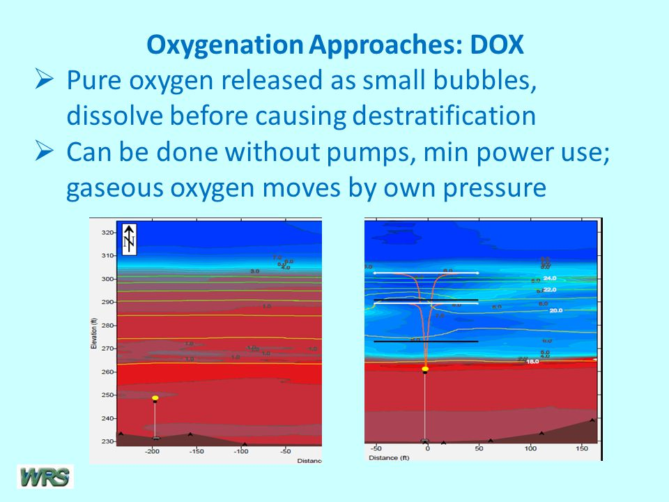 Oxygenation Approaches: DOX  Pure oxygen released as small bubbles, dissolve before causing destratification  Can be done without pumps, min power use; gaseous oxygen moves by own pressure