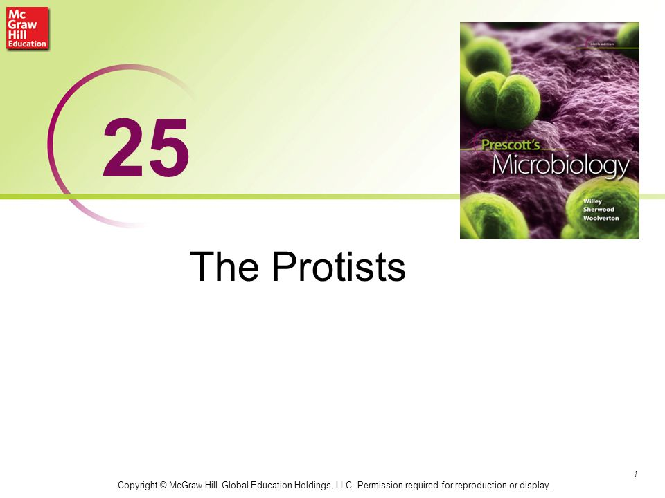 The Protists 1 25 Copyright © McGraw-Hill Global Education Holdings, LLC. Permission required for reproduction or display.