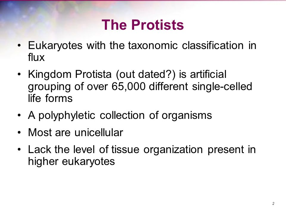 The Protists Eukaryotes with the taxonomic classification in flux Kingdom Protista (out dated?) is artificial grouping of over 65,000 different single