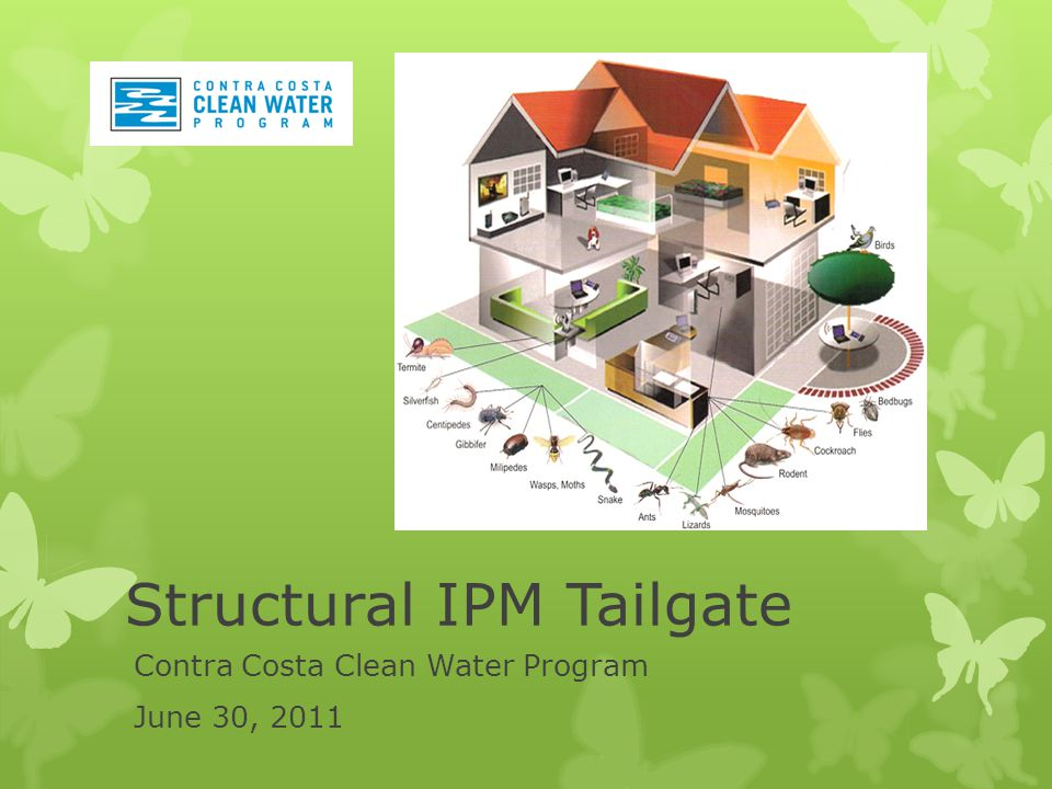 Contra Costa Clean Water Program June 30, 2011 Structural IPM Tailgate
