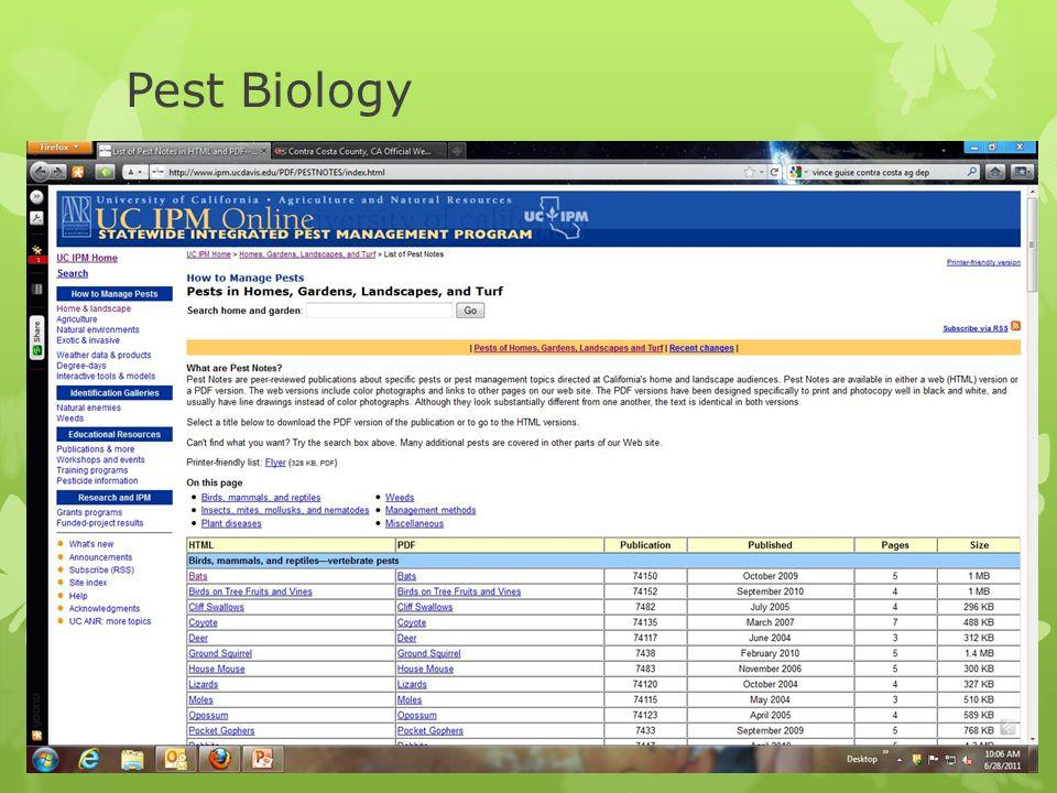Pest Biology