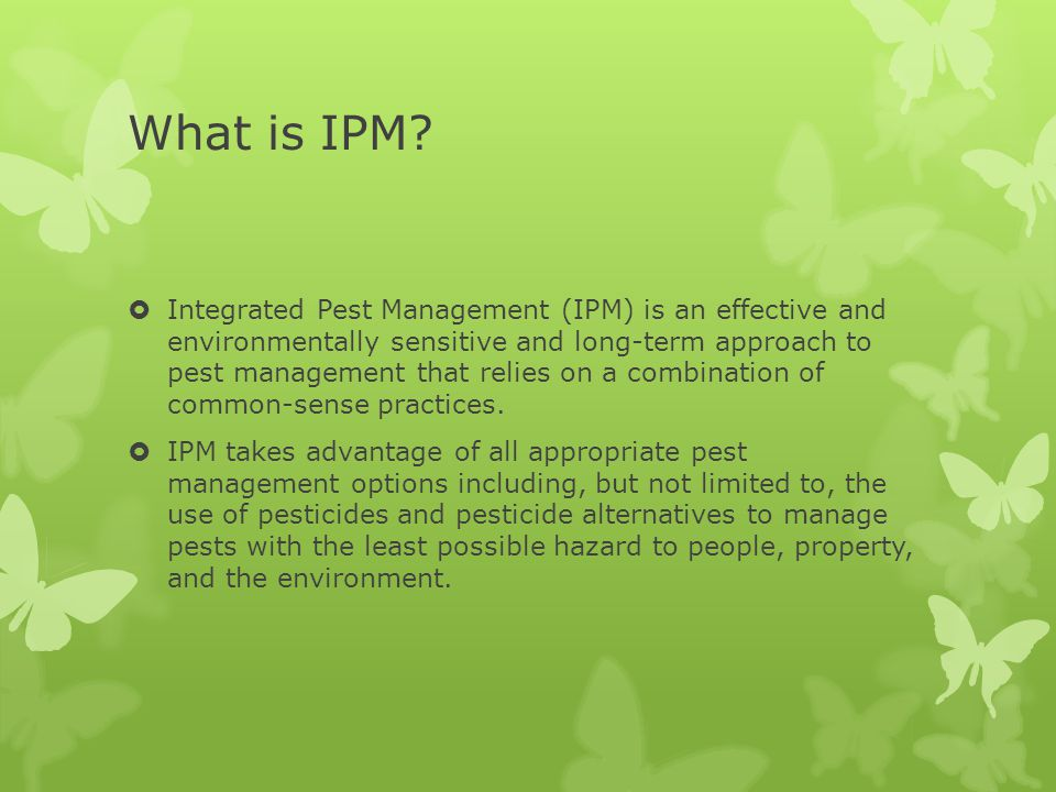 What is IPM.