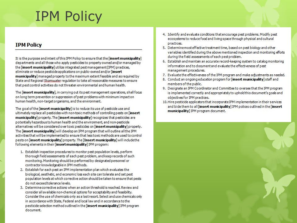 IPM Policy