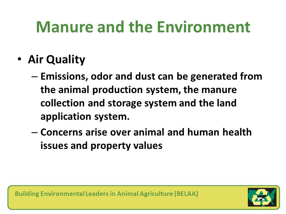 Building Environmental Leaders in Animal Agriculture (BELAA) Manure and the Environment Air Quality – Emissions, odor and dust can be generated from the animal production system, the manure collection and storage system and the land application system.