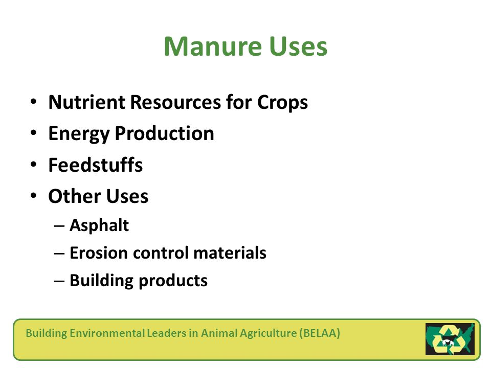 Building Environmental Leaders in Animal Agriculture (BELAA) Manure Uses Nutrient Resources for Crops Energy Production Feedstuffs Other Uses – Asphalt – Erosion control materials – Building products