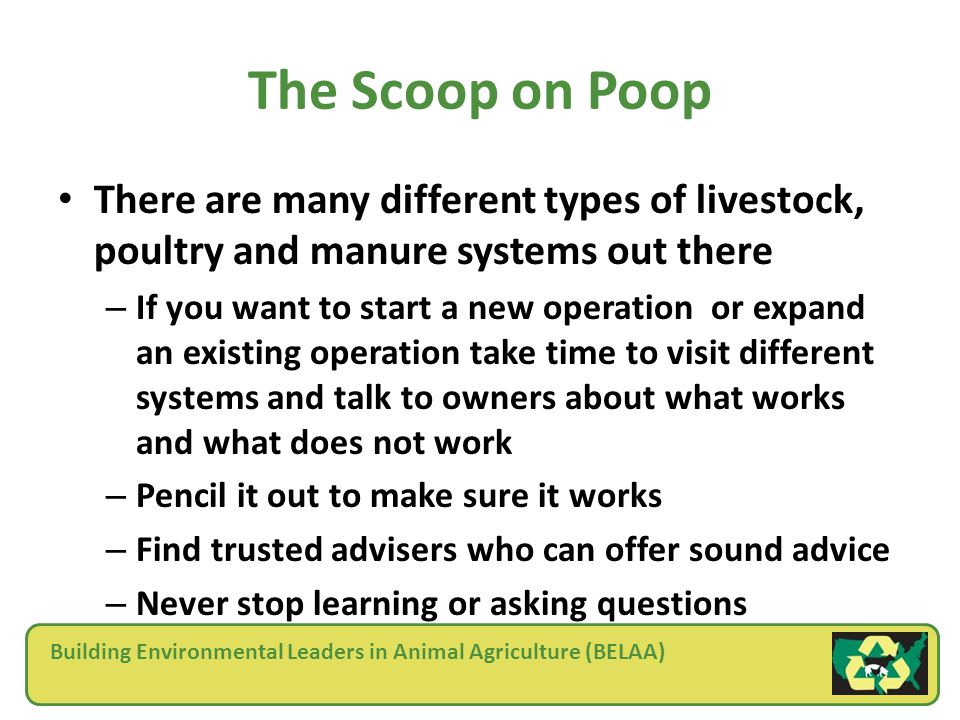 Building Environmental Leaders in Animal Agriculture (BELAA) The Scoop on Poop There are many different types of livestock, poultry and manure systems out there – If you want to start a new operation or expand an existing operation take time to visit different systems and talk to owners about what works and what does not work – Pencil it out to make sure it works – Find trusted advisers who can offer sound advice – Never stop learning or asking questions