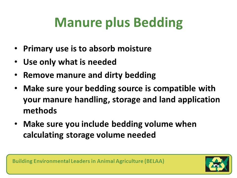 Building Environmental Leaders in Animal Agriculture (BELAA) Manure plus Bedding Primary use is to absorb moisture Use only what is needed Remove manure and dirty bedding Make sure your bedding source is compatible with your manure handling, storage and land application methods Make sure you include bedding volume when calculating storage volume needed