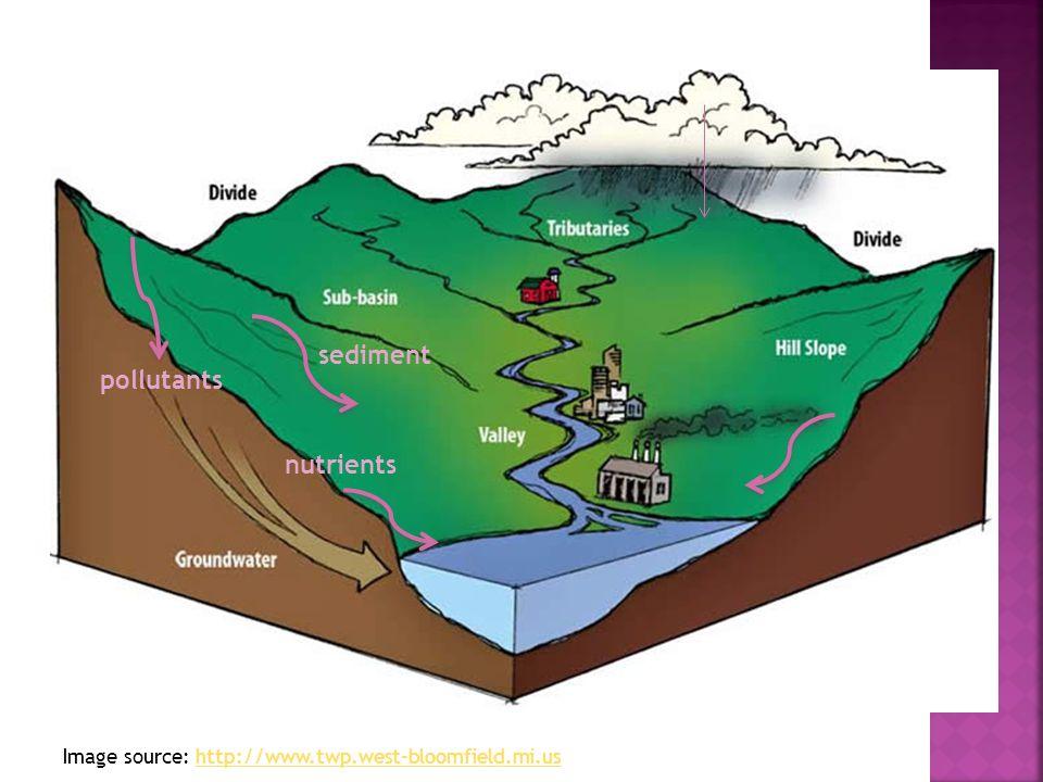 Image source: http://www.twp.west-bloomfield.mi.ushttp://www.twp.west-bloomfield.mi.us sediment pollutants nutrients