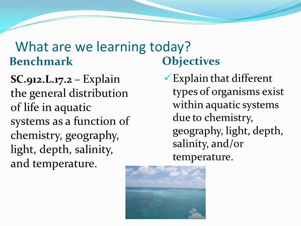 What are we learning today? Benchmark Objectives SC.912.L.17.2 – Explain the general distribution of life in aquatic systems as a function of chemistr