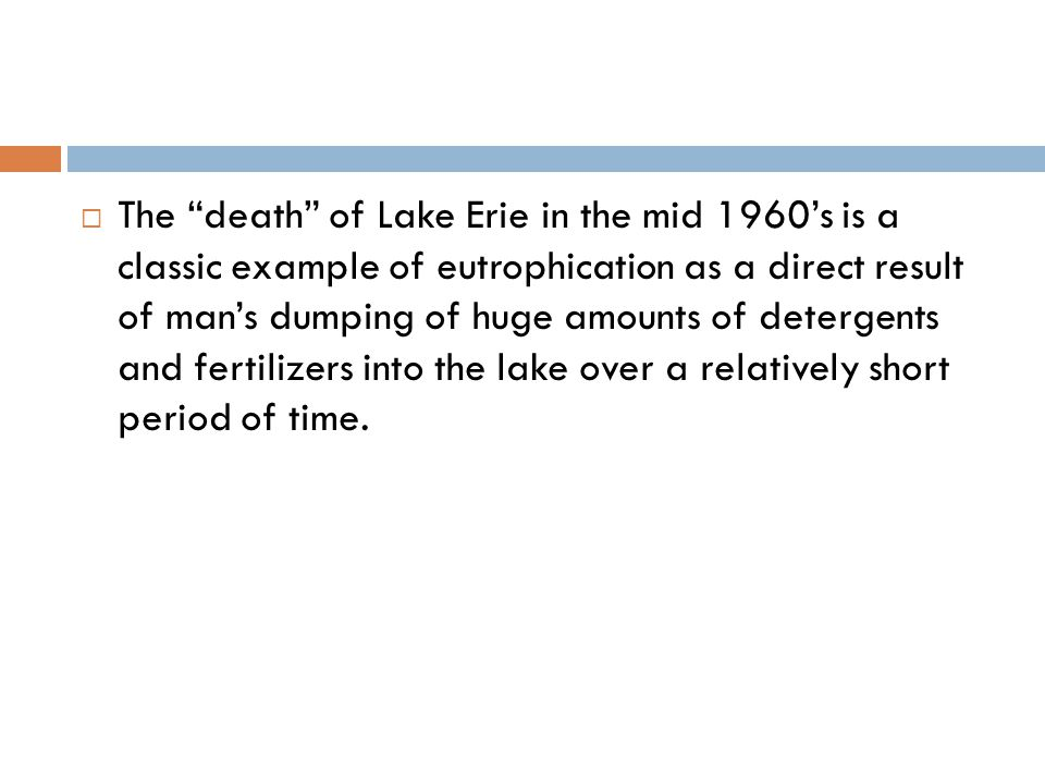 " The ""death"" of Lake Erie in the mid 1960's is a classic example of eutrophication as a direct result of man's dumping of huge amounts of detergents"