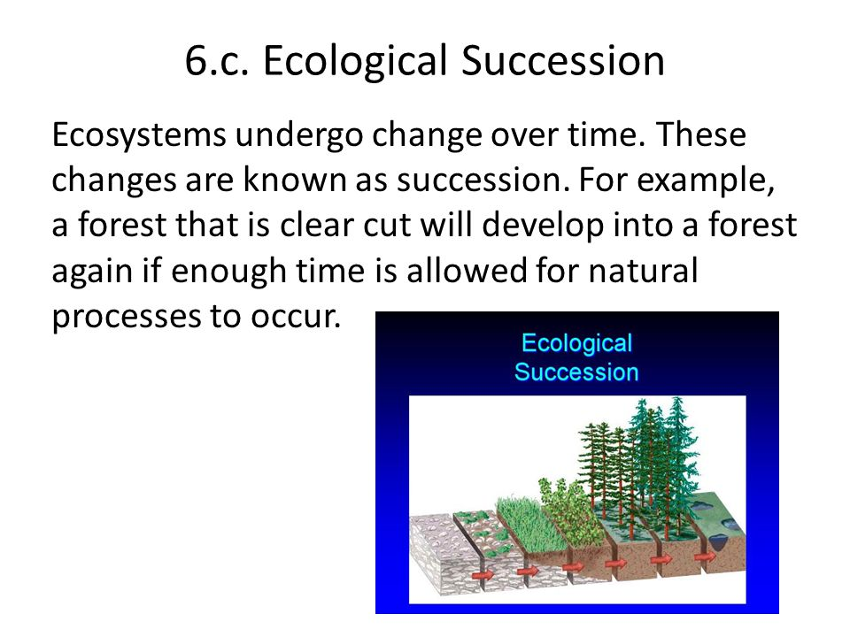 6.c. Ecological Succession Ecosystems undergo change over time. These changes are known as succession. For example, a forest that is clear cut will de