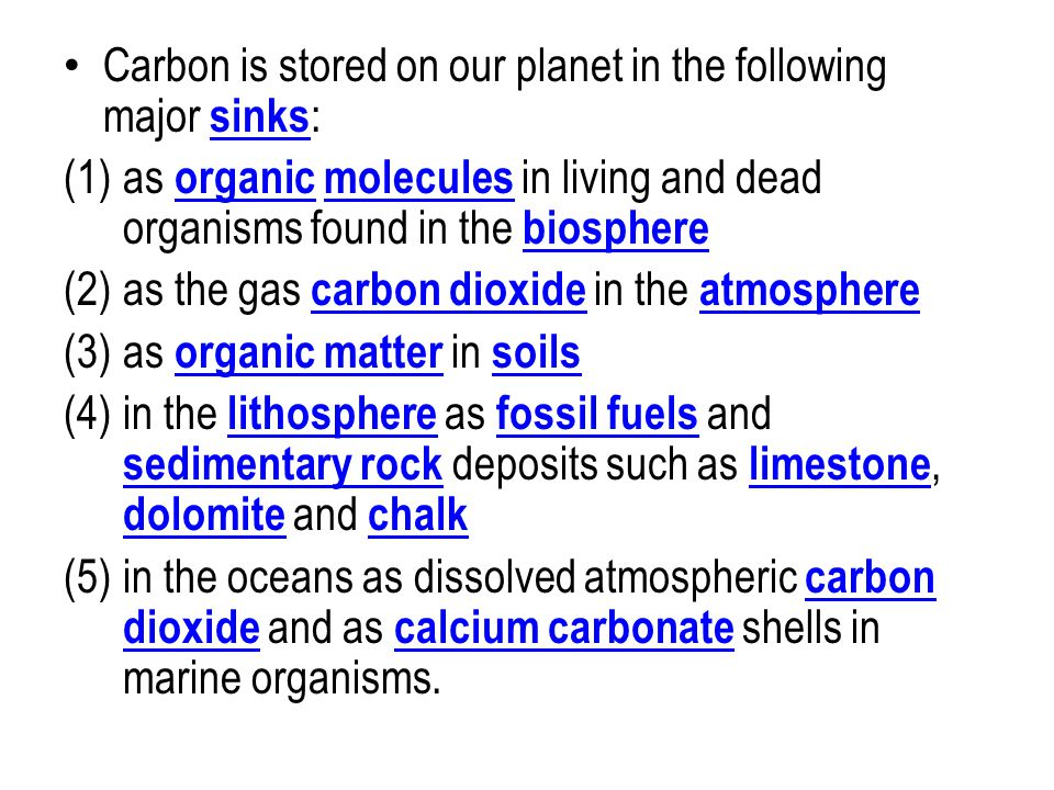 Carbon is stored on our planet in the following major sinks : sinks (1)as organic molecules in living and dead organisms found in the biosphere organi