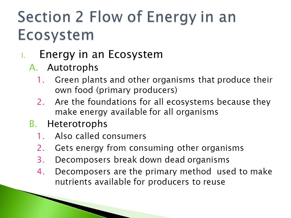 I. Energy in an Ecosystem A.Autotrophs 1.Green plants and other organisms that produce their own food (primary producers) 2.Are the foundations for al