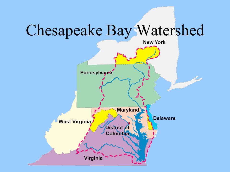 Chesapeake Bay Watershed Maryland Delaware New York District of Columbia Virginia West Virginia Pennsylvania