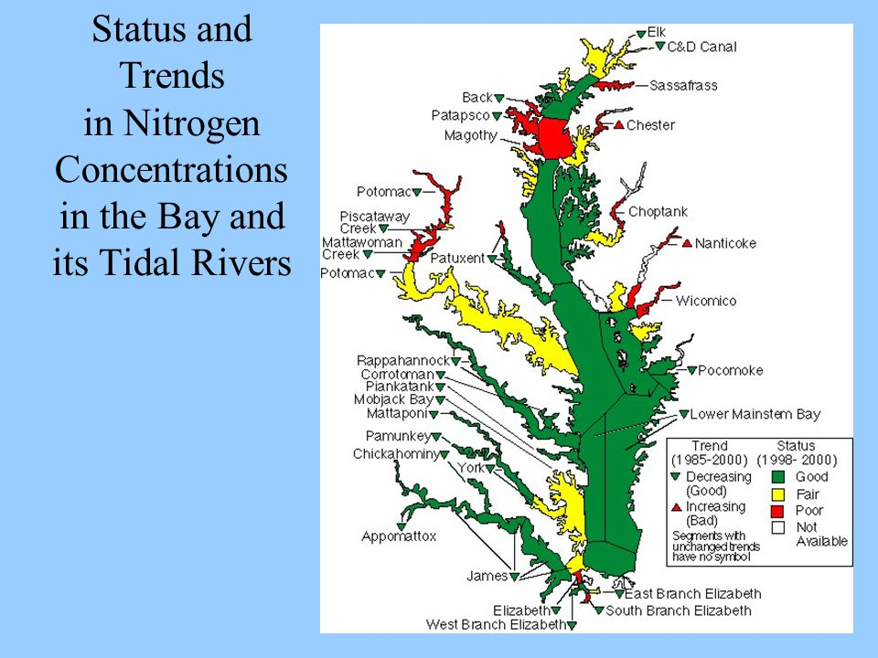 Status and Trends in Nitrogen Concentrations in the Bay and its Tidal Rivers