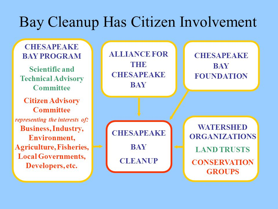Bay Cleanup Has Citizen Involvement CHESAPEAKE BAY PROGRAM Scientific and Technical Advisory Committee Citizen Advisory Committee representing the interests of : Business, Industry, Environment, Agriculture, Fisheries, Local Governments, Developers, etc.
