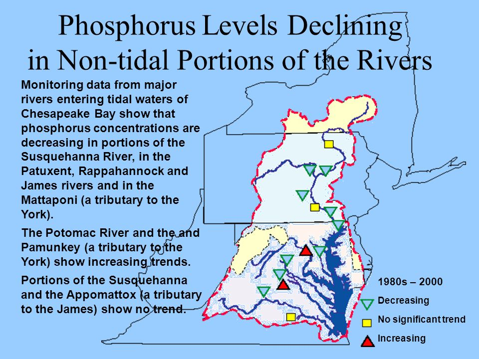 Monitoring data from major rivers entering tidal waters of Chesapeake Bay show that phosphorus concentrations are decreasing in portions of the Susque