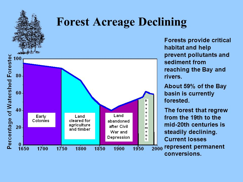 Forest Acreage Declining Forests provide critical habitat and help prevent pollutants and sediment from reaching the Bay and rivers.