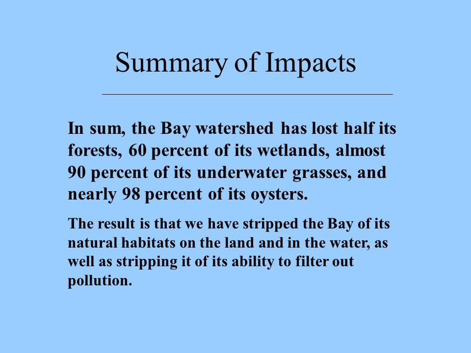 In sum, the Bay watershed has lost half its forests, 60 percent of its wetlands, almost 90 percent of its underwater grasses, and nearly 98 percent of