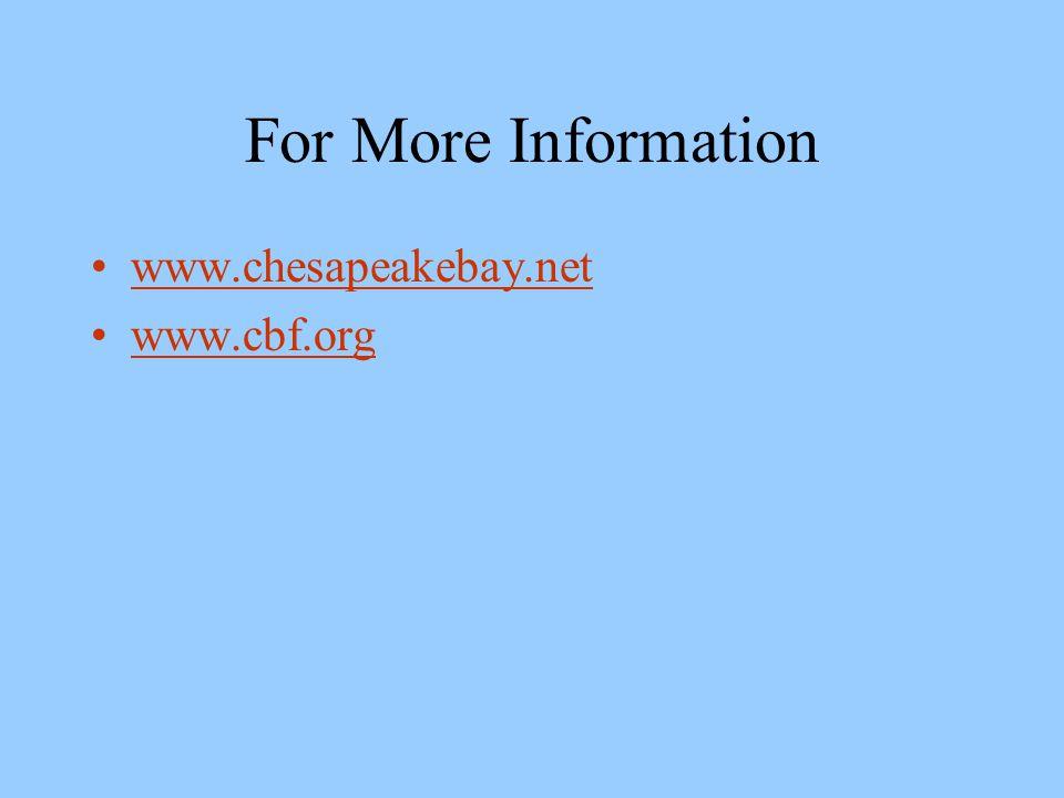 For More Information www.chesapeakebay.net www.cbf.org