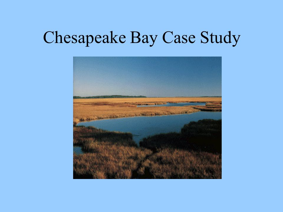 Chesapeake Bay Case Study