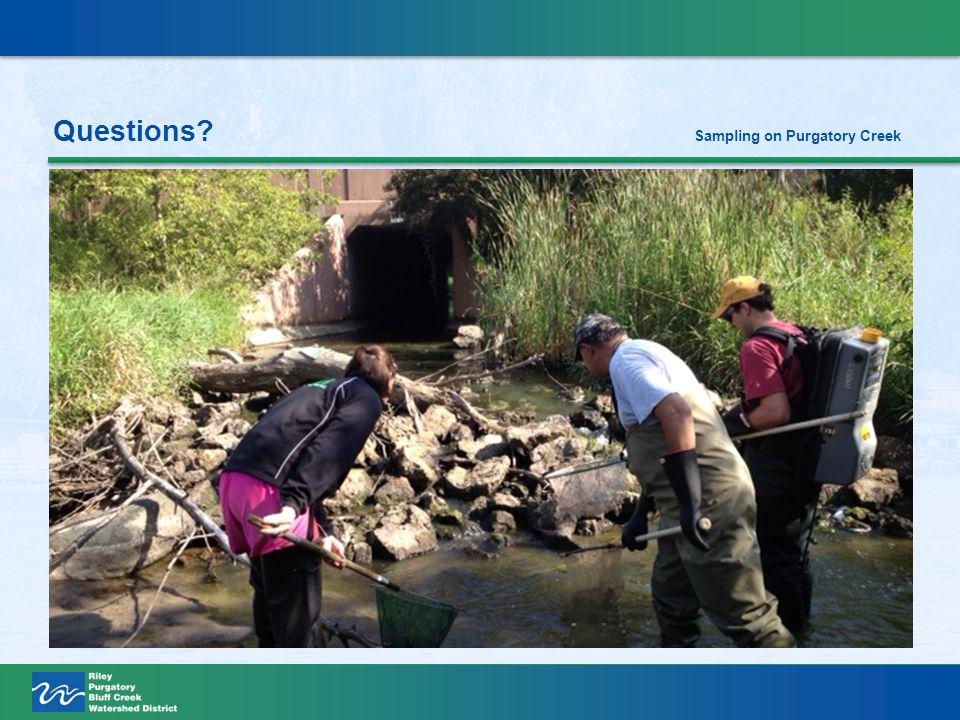Questions Sampling on Purgatory Creek