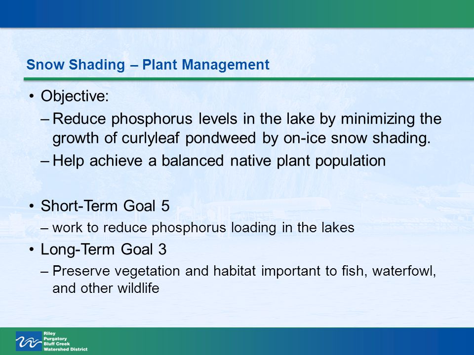 Objective: –Reduce phosphorus levels in the lake by minimizing the growth of curlyleaf pondweed by on-ice snow shading.