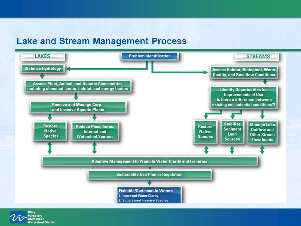 Lake and Stream Management Process