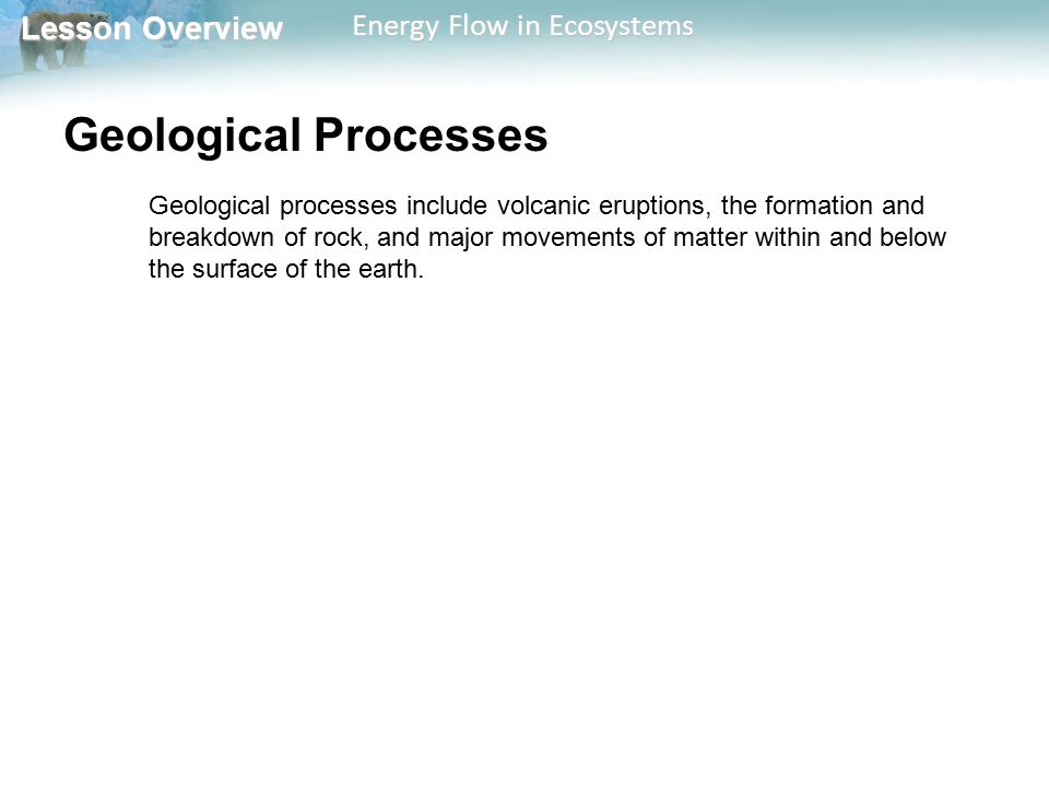 Lesson Overview Lesson Overview Energy Flow in Ecosystems Geological Processes Geological processes include volcanic eruptions, the formation and brea